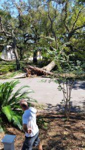 Surviving Hurricane Matthew 2016 | Savannah Dream Vacations